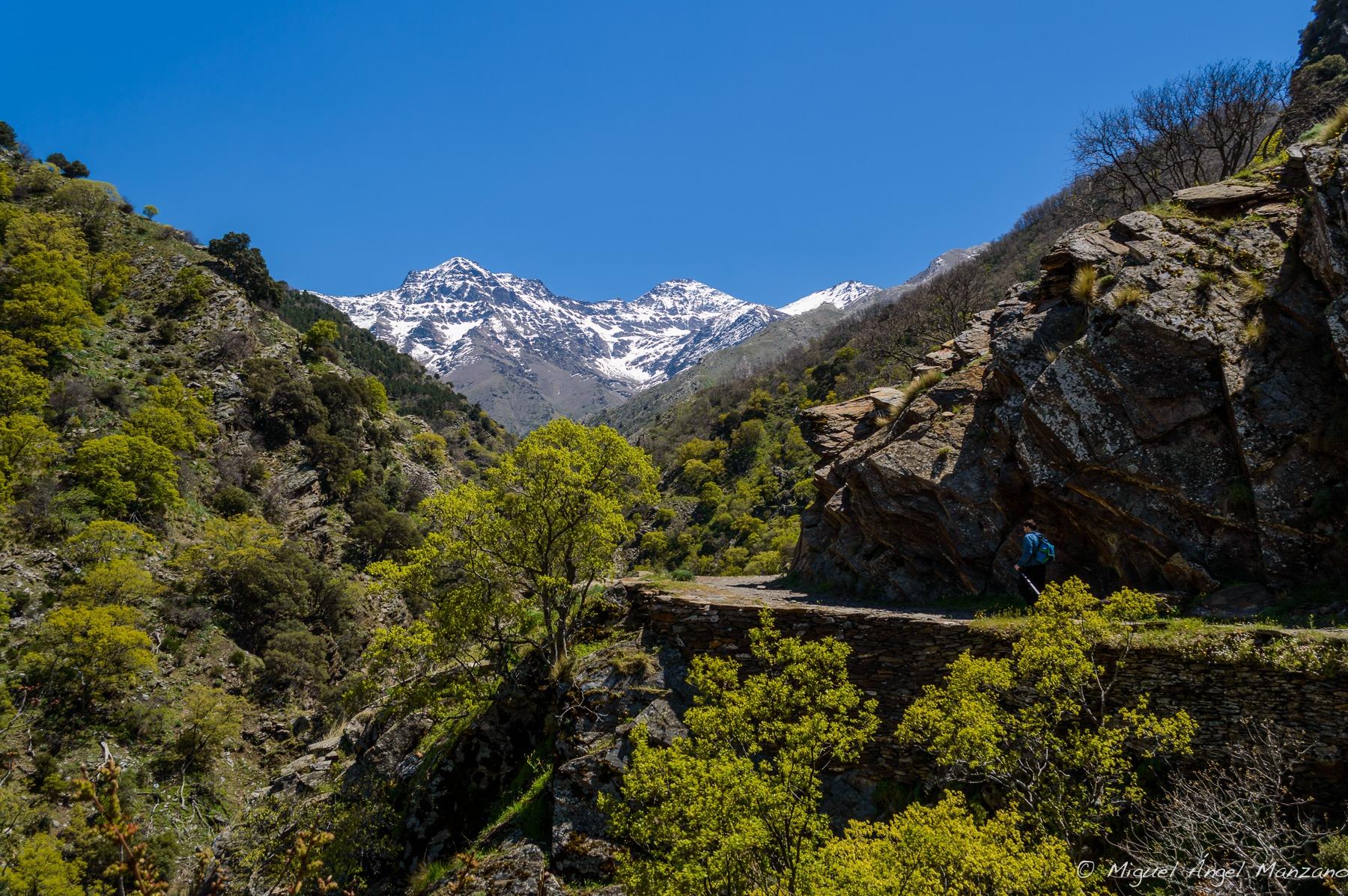 ereda de la Estrella, Sierra Nevada al fondo (I)